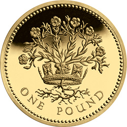 1986 c2a31 gilded flax - Poll: What is your favourite £1 Coin Design? - Northern Ireland