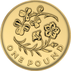 2014 flax c2a31 - Poll: What is your favourite £1 Coin Design? - Northern Ireland