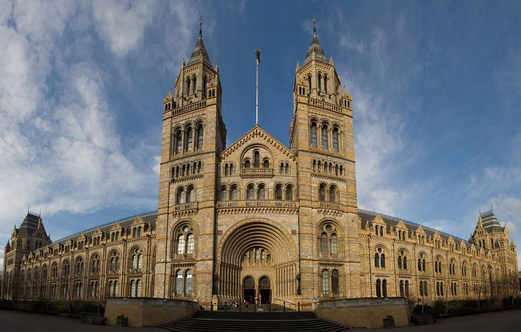 Natural History Museum London 1024x653 - Did you know that the first 10p is actually 170 years old?